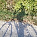 Balade à vélo en octobre par  - Malemort du Comtat 84570 Vaucluse Provence France
