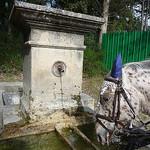 un copain aussi assoiffé que moi par  - Malemort du Comtat 84570 Vaucluse Provence France