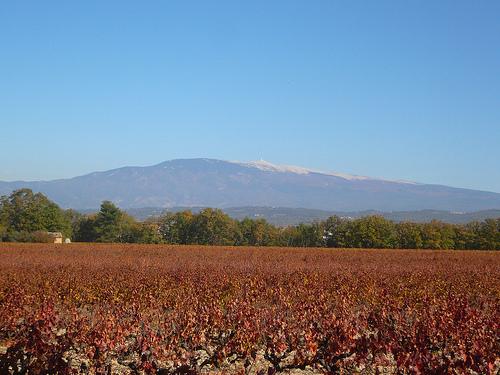 Mont-ventoux en novembre by gab113