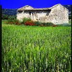 Maisonnette abandonnée par Patrick Bombaert - Ménerbes 84560 Vaucluse Provence France