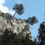 Le vallon de la Galère par surmjolk - Mérindol 84360 Vaucluse Provence France
