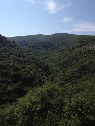 vallée verte toute vierge sur la route entre Monieux et Méthamis par gab113