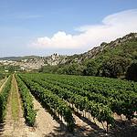 Méthamis et ses vignes par gab113 - Méthamis 84570 Vaucluse Provence France