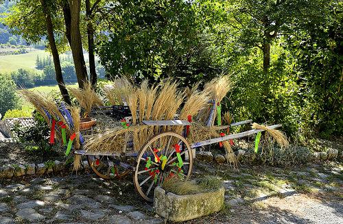 Charette d'épeautre décorée par christian.man12