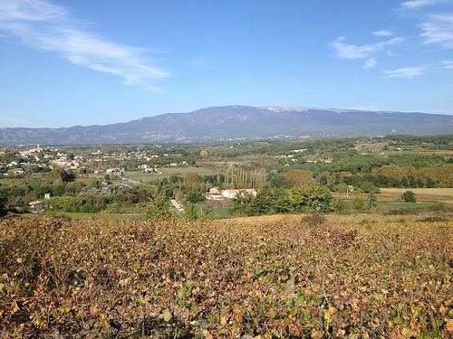 Mormoiron en automne, au pied du Mont-Ventoux par gab113