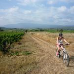 Randonnée à Vélo au pied du Mont-Ventoux par  - Mormoiron 84570 Vaucluse Provence France