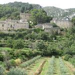 Oppède Le Vieux tout en vert par Andrew Findlater - Oppède 84580 Vaucluse Provence France