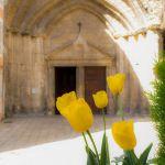 Cathédrale Notre-Dame de Nazareth d'Orange by  - Orange 84100 Vaucluse Provence France