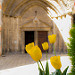Cathédrale Notre-Dame de Nazareth d'Orange by Mich3G - Orange 84100 Vaucluse Provence France