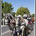 Chevaux de trait - Journées du Patrimoine à Pernes les Fontaines par Photo-Provence-Passion - Pernes les Fontaines 84210 Vaucluse Provence France