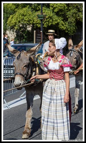 Journées du Patrimoine 2012 à Pernes les Fontaines  by Photo-Provence-Passion