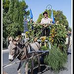 Défilé pour les Journées du Patrimoine à Pernes les Fontaines par Photo-Provence-Passion - Pernes les Fontaines 84210 Vaucluse Provence France