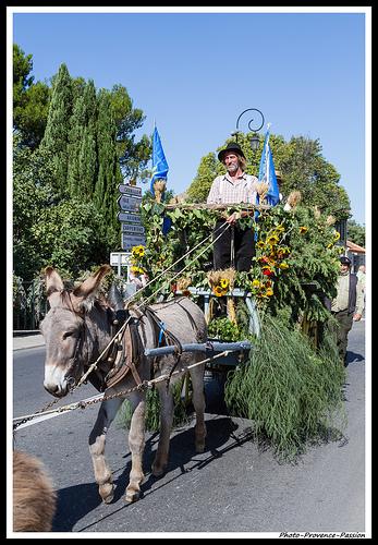 Défilé pour les Journées du Patrimoine à Pernes les Fontaines par Photo-Provence-Passion