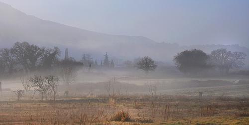 Brumes matinales à Robion par Charlottess