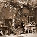 Vintage Roussillon... en terrasse par matejcek - Roussillon 84220 Vaucluse Provence France