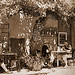 Vintage Roussillon... en terrasse by Boccalupo - Roussillon 84220 Vaucluse Provence France