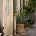 Au repos à l'ombre par Mario Graziano - Saignon 84400 Vaucluse Provence France
