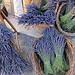 Sault : bouquet de lavande séchée by __Olivier__ - Sault 84390 Vaucluse Provence France