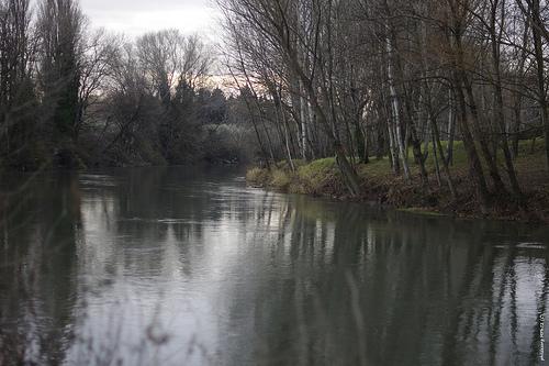 La rivière Ouvèze en hiver sous un ciel couvert by phildesorg