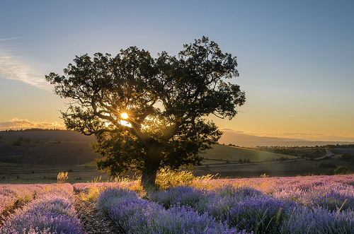 Magnifique lever de soleil près de Sault par Stéphan Wierzejewski