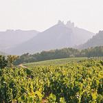 Les Dentelles de Montmirail par brmougin - Suzette 84190 Vaucluse Provence France
