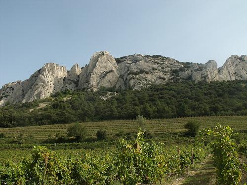 Le sommet des Dentelles de Montmirail by george.f.lowe