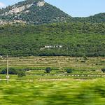 Collines et vignes de Vacqueyras par  - Vacqueyras 84190 Vaucluse Provence France