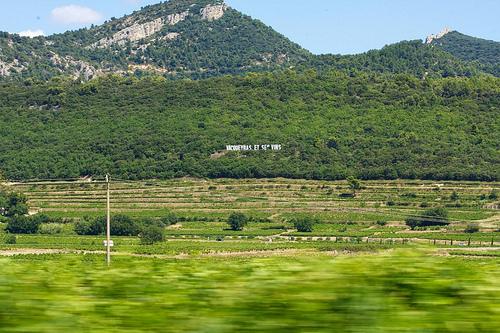 Collines et vignes de Vacqueyras par Gepat