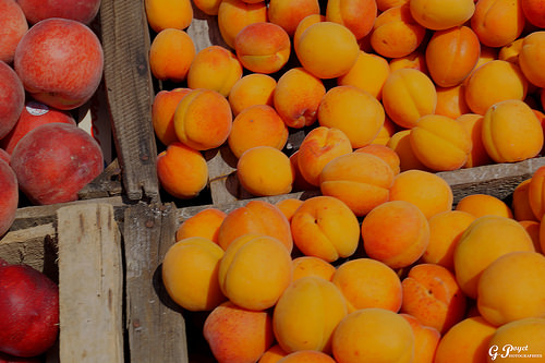 Abricots sur le marché de Vaison par Gilles Poyet photographies
