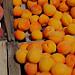 Abricots sur le marché de Vaison par Gilles Poyet photographies - Vaison la Romaine 84110 Vaucluse Provence France