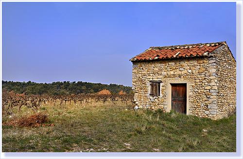 Cabanon des vignes - Vaison-la-Romaine by Charlottess