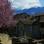 Le sommet du Mont-Ventoux face Nord par fgenoher - Vaison la Romaine 84110 Vaucluse Provence France