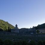 Abbaye de Sénanque à l'ombre by MaJuCoMi - Velleron 84740 Vaucluse Provence France