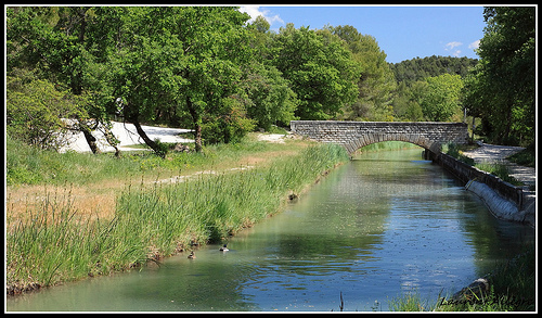 Le Long du Canal de Carpentras by redwolf8448