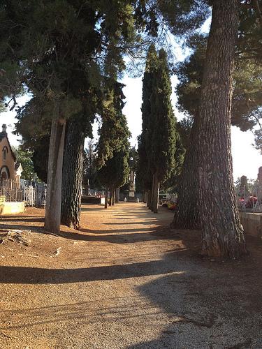 Cimetière de Villes-sur-Auzon à la Toussaint par gab113