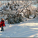 Provence avec de la neige, un conte de fées !!! by J@nine - Vitrolles 84240 Vaucluse Provence France