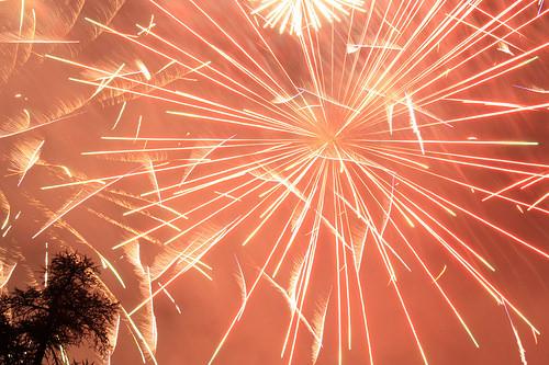 14 juillet, explosion ! par sylviepoignettestu