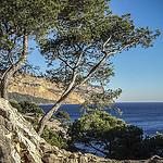 Un avant goût de paradis - vu sur Cap Canaille par Patougreef - Cassis 13260 Bouches-du-Rhône Provence France
