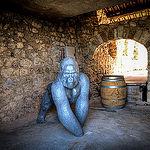 Surprise lors d'une visite de cave par  - Gigondas 84190 Vaucluse Provence France