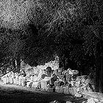 Pierres - Les Alyscamps by Jostrech - Arles 13200 Bouches-du-Rhône Provence France