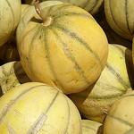 Marché : les beaux melons de Cavaillon par Elisabeth85 - Cavaillon 84300 Vaucluse Provence France