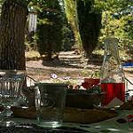 Rosé à l'ombre des cypres - La table... par F.G photographies - Flassan 84410 Vaucluse Provence France
