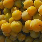 Prunes sur le marché de Vaison La Romaine par Gilles Poyet photographies - Vaison la Romaine 84110 Vaucluse Provence France