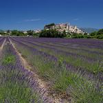 Grignan : Provence purple par Johan_Leiden -   provence Provence France