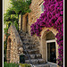 A house in Saint Paul de Vence par Filou30 - Saint-Paul de Vence 06570 Alpes-Maritimes Provence France