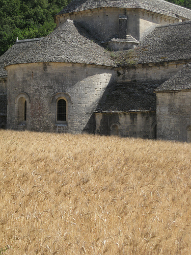 Cistercian Abbey of Senanque by Andrew Findlater