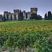 Domaines Mousset : Château des Fines Roches par Elisabeth- - Châteauneuf-du-Pape 84230 Vaucluse Provence France