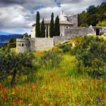 Paysage impressionniste : pierre, coquelicots, cyprès by Patrick Bombaert -   Vaucluse Provence France