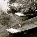 Barques sur la sorgue : Isle sur la Sorgue par p&m02 - L'Isle sur la Sorgue 84800 Vaucluse Provence France