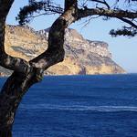Cap Canaille plongeant dans la mer  par Ludo@Bxl - Cassis 13260 Bouches-du-Rhône Provence France